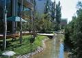 河流景观,卵石驳岸,草坪,景石,常绿乔木,住宅景观