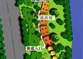 绿地规划,植物平面