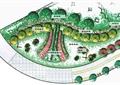 小游园景观,道路,花卉植物,小径,植被