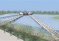 涉水池景观,栈道桥,平台,植被