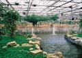 涉水池景观,景石,栏杆,生态农庄