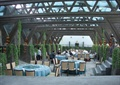 餐厅,餐桌椅,天花吊顶,餐具,吊灯,藤蔓植物