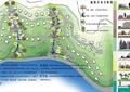 植物分析图,河流景观,植被