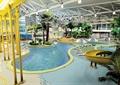 游泳馆,游泳池,滑梯,植被
