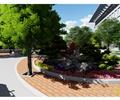 花坛,花卉植物,灌木植物,常绿乔木,树池,地面铺装,道路景观