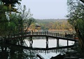 园桥,拱桥,木桥,水景