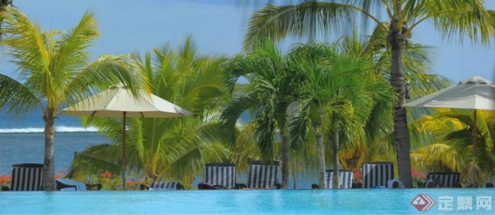 东南亚海景度假酒店景观-棕榈滨水景观泳池景观-设计