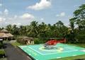 飞机,地面铺装,园路,热带植物