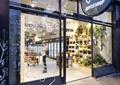 玻璃门,地面铺装,商业标识,酒柜,酒,植物,酒吧