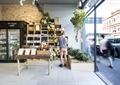 酒柜,酒,展示桌,种植池,玻璃窗,盆栽植物,地面铺装,酒吧