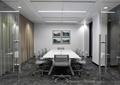 会议桌椅,装饰画,地面铺装,玻璃门,天花吊顶,会议室