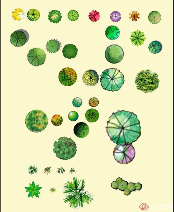 植物平面素材设计psd 图