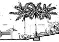 茅草亭,休闲椅,景观树