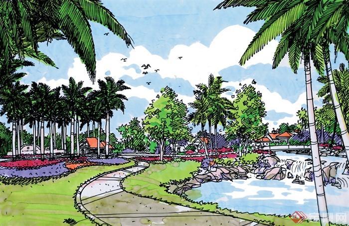 景观设计手绘图-棕榈棕树景观水池园路景观乔木-设计