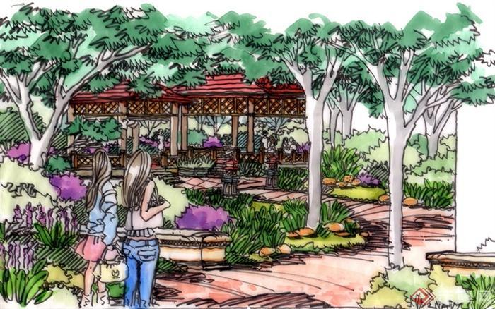 景观设计手绘图-长廊凉亭乔木坐凳园路景观-设计师