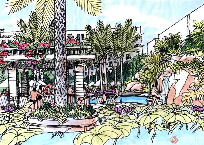 住宅景观规划设计手绘图-水池景观水生植物景观树