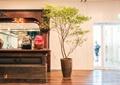 盆栽,盆景,木地板,柜臺,前臺
