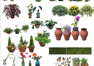 盆栽、花钵、植物素材PSD格式