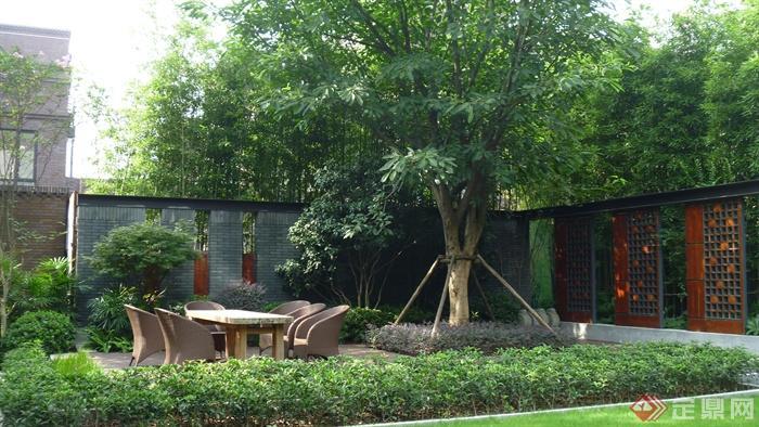 庭院景观,景墙,主景树,桌椅,灌木植物喜树,竹子,红花檵木