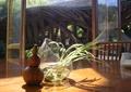 葫芦,花瓶插花,摆件,装饰品