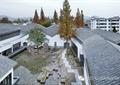 屋顶,落叶乔木,树池,庭院景观,景观水池