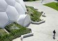异形建筑,小品,园路,地面铺装,种植池,地被植物,广场景观