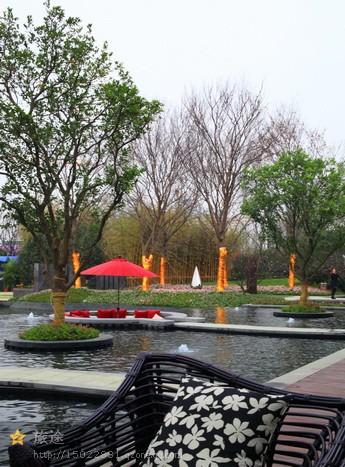 靠枕,乔木,树池,遮阳伞,景观水池,喷泉水池
