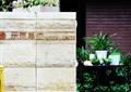 景墙,标志墙,地面铺装,盆栽植物,住宅景观