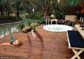 木平台,台阶,游泳池,景石,花卉植物,河流景观,落叶乔木,灌木植物,庭院景观,住宅景观