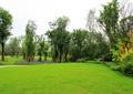 草坪景观,落叶乔木,花卉植物,灌木植物,住宅景观