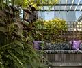 沙发,木地板,廊架,灌木植物,屋顶花园,庭院景观