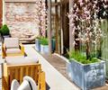 花钵,沙发,地面铺装,观花乔木有,露台花园,庭院景观