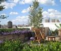 木质桌椅,草坪,花池,花灌木,露台花园,庭院景观