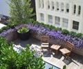 木质桌椅,地面铺装,花池,花灌木,花钵,露台花园,庭院景观