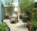 桌椅,花缽,竹林,圍墻,庭院景觀,住宅景觀