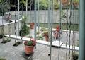 花架,葡萄架,盆栽,围墙