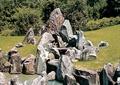 假山,石头,景石,草坪,石块