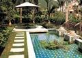 水池景观,水生植物,汀步,草坪,亭子,景观树,住宅景观