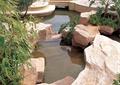 景石石头,景石水景,石头,自然石