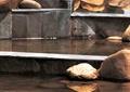 台阶式水景,景石水景,石头,自然石