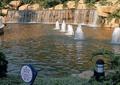 水池,水景,水池喷泉,喷泉水景,喷泉水柱,喷泉景观,水体景观