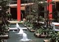 喷泉,水池,水池喷泉,水池水景,水景,水景水池