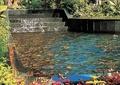 台阶式跌水景观,水景水池,水池驳岸