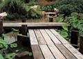 木桥,桥梁,桥廊,桥路,景观桥,桥