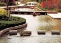 汀步,水景水池,驳岸,道路景观