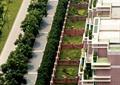 街道景观规划,道路绿化,道路街景