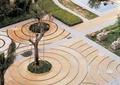 地面拼花,树池,水景雕塑,雕塑小品