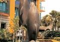 雕塑,动物雕塑,海豚,雕塑水景