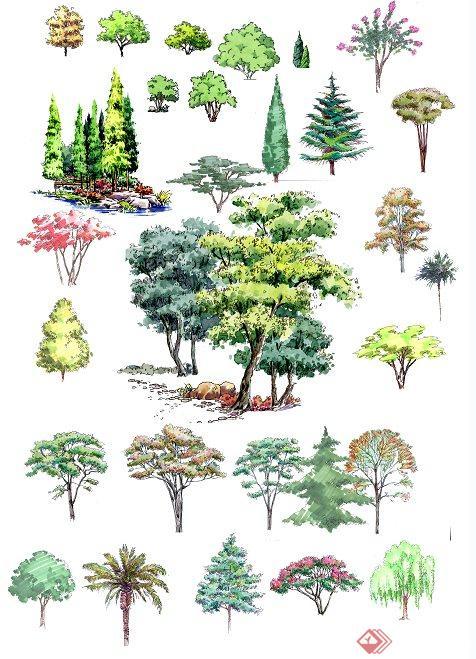 手绘样式植物立面ps素材