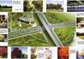 道路景观,道路设计